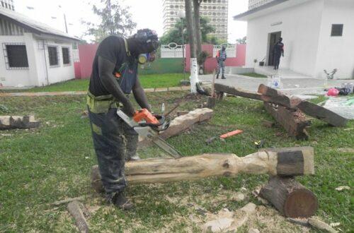 Article : Le concours de la sculpture au service du développement durable